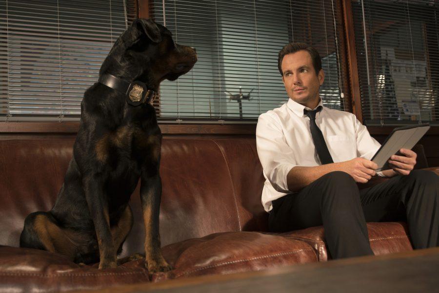 """""""Show Dogs – Entriamo in Scena"""": arriva il film di beneficenza con tanti vip"""