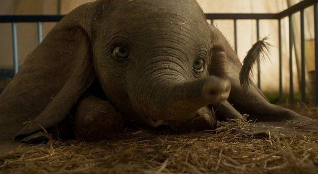 """""""Dumbo"""": rilasciato il trailer italiano del live-action diretto da Tim Burton"""