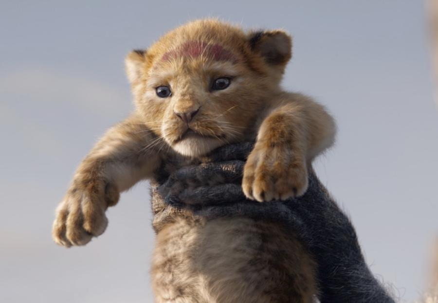 """""""Il Re Leone"""": rilasciati un nuovo poster ed un nuovo video"""