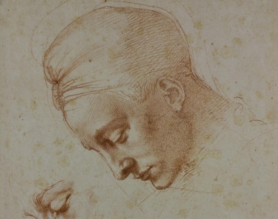 Michelangelo: i disegni del grande artista in mostra a Torino