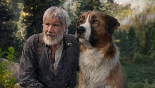 """""""Il richiamo della foresta"""" arriva al cinema in una nuova versione"""